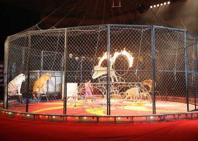 KsStar-Circus-026