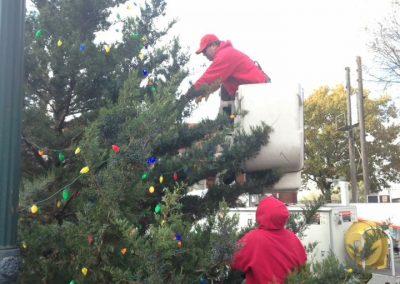 Downtown Christmas Tree Putting On Lights